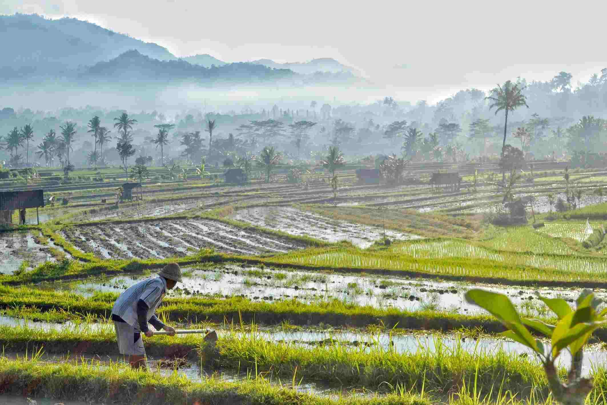 Sidemen Bali Itinerary